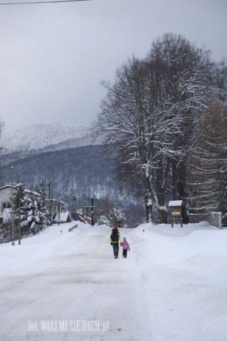 Wetlina zimą