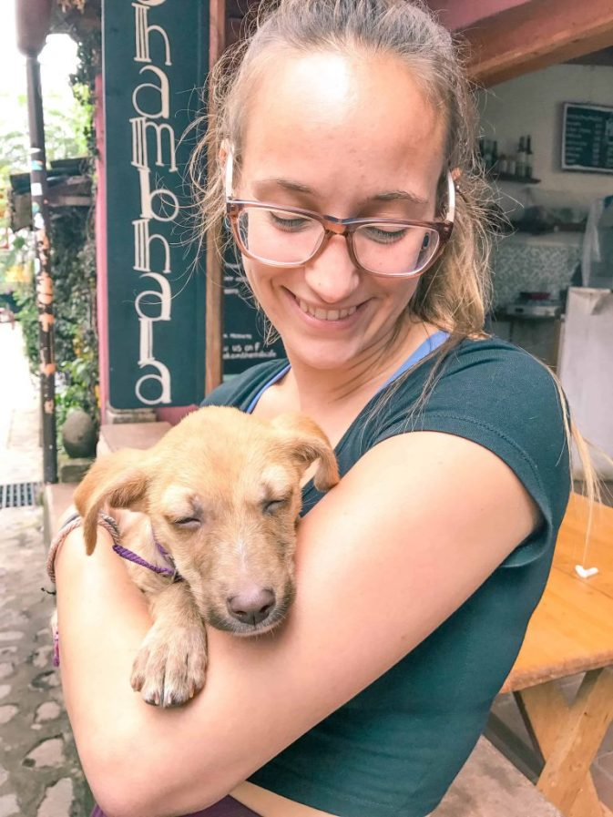 playing with puppies in san marcos la laguna