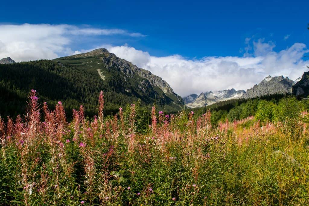 Hiking in the high tatras in slovakia