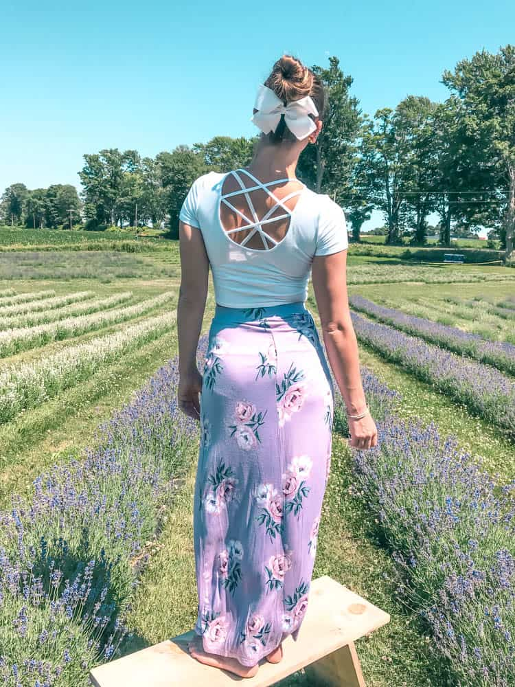 best places to take instagram photos in lavender fields near toronto
