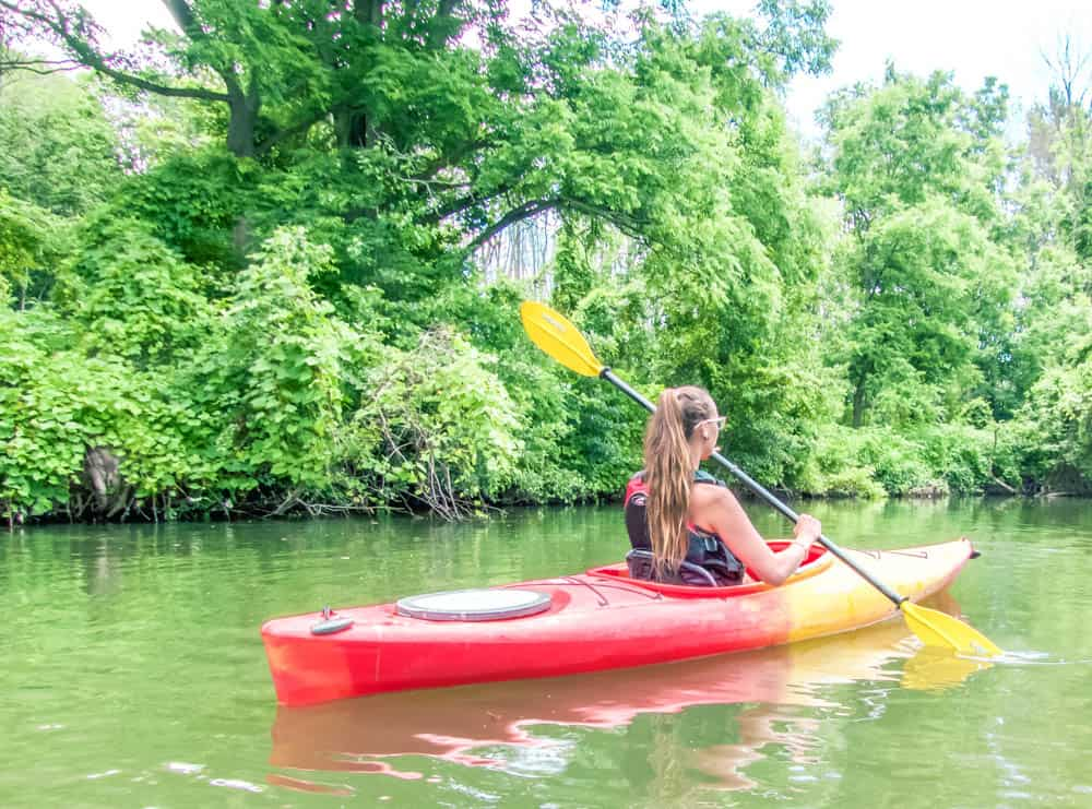 Kayaking down Big Creek in Long Point Ontario through long point eco adventures