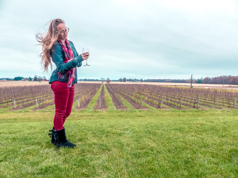 coopers hawk vineyard in essex county
