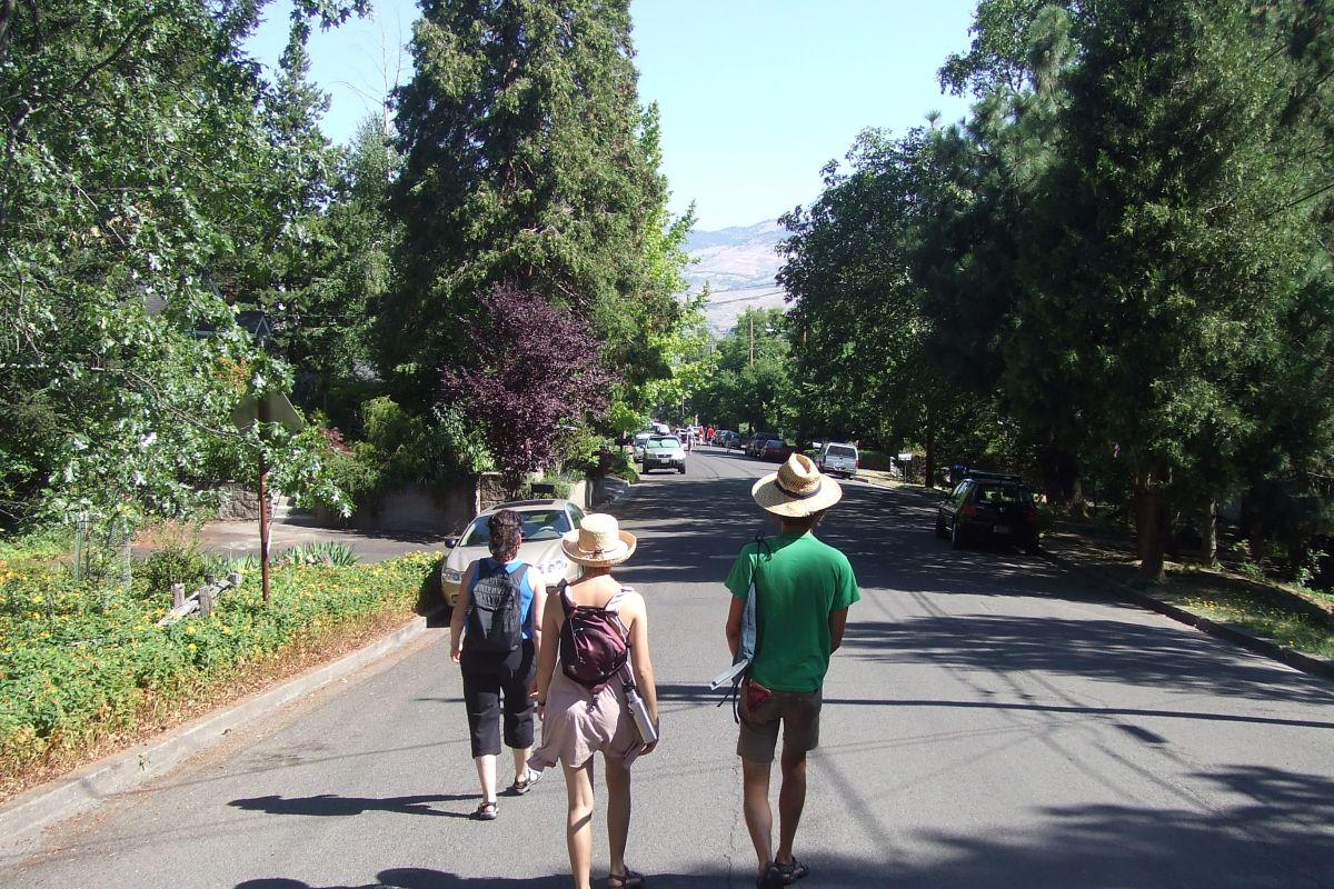 Walking for Longevity