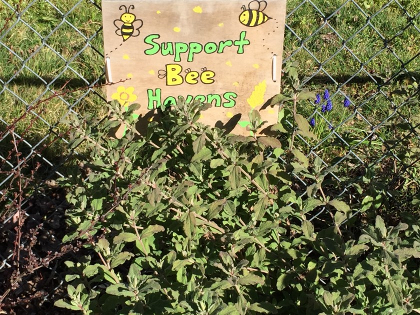 """Support Bee Havens"" sign"