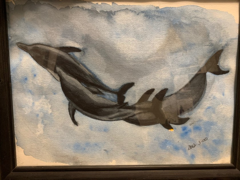 Dolphin water color