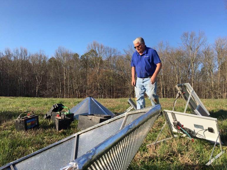 Man looks at solar array