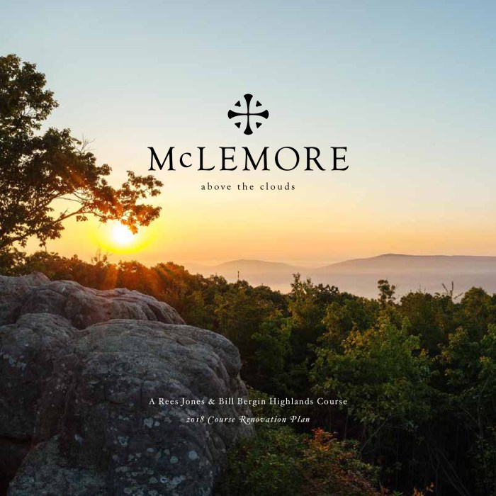 McLemore Course Redesign Book