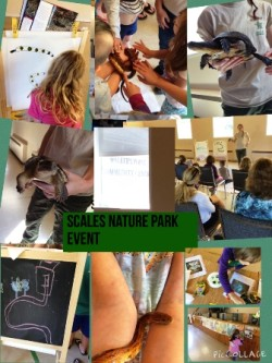 Scales Nature Park Event