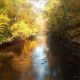 Clear Fork in the Fall