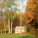 Cabin in the Mohican