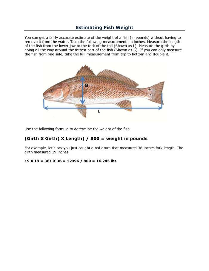 Estimating Fish Weight