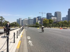 Palace Cycling