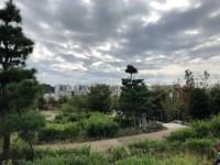 A view from Meguro Sky Garden