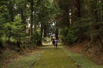 Road to Ushio Jinja Shrine