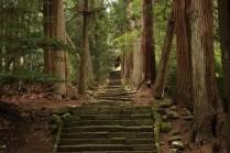 Steps towards Seisui-ji Temple