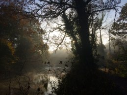 The River Nore, Durrow, Co. Laois.
