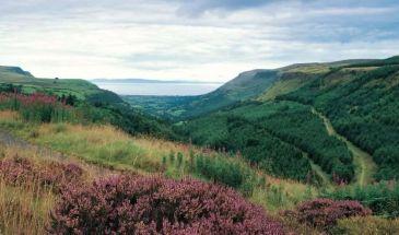 Glens of Antrim.Glenariff forest park in the Glens of Antrim.
