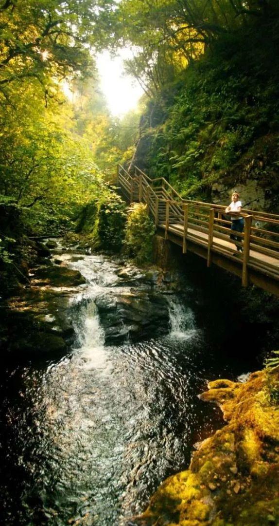 Waterfall walk in Glenariff Forest Park.