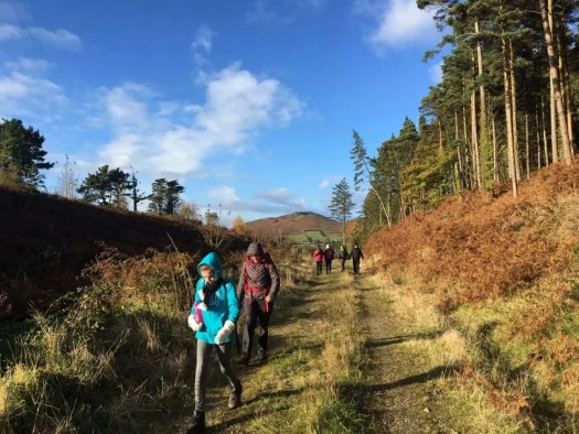 Two families hiking the Cooley Peninsula.
