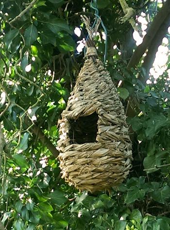 Bird Roost