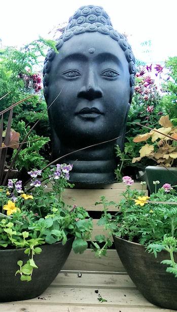 GardenCenter2