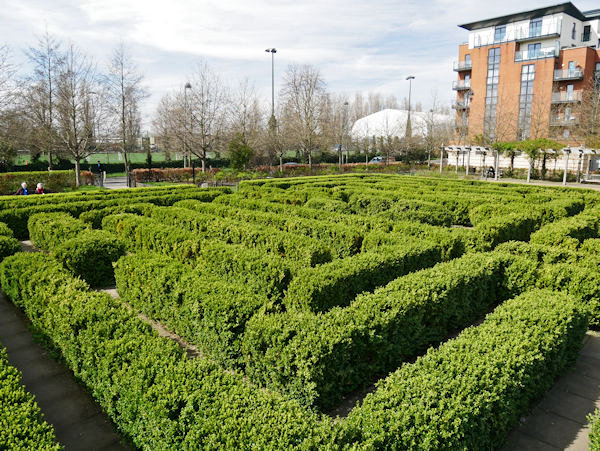 Coronation Gardens Hedge Maze