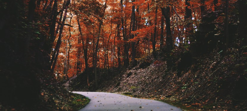 Why October Is a Great Month To Start Exercising