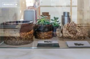 6 Bienal de Diseño - Estación Mapocho - 15.01.2017 - WalkingStgo - 18