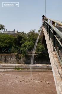 6-contra-puente-100en1dia-santiago-19-11-2016-walkingstgo-5