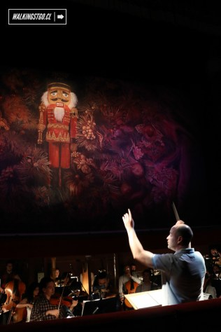 Cascanueces 2015 en el Teatro Municipal de Santiago de Chile - 3