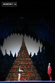 Cascanueces 2015 en el Teatro Municipal de Santiago de Chile - 33