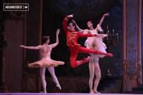 Cascanueces 2015 en el Teatro Municipal de Santiago de Chile - 89