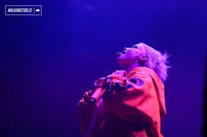 Die Antwoord - Lollapalooza 2016 - Domingo 20 de marzo - © walkingstgo - 33