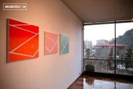 Galería CIMA - Exposición - Ace de Fifadosmildos - 12.08.2017 - WalkingStgo - 4