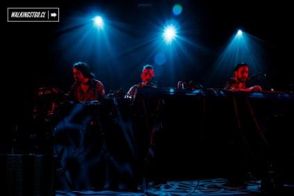 matanza-moderat-en-chile-club-fauna-02-12-2016-walkingstgo-5