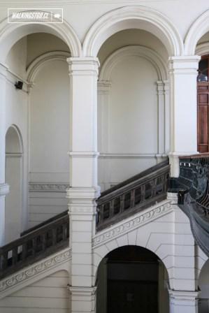 MUSEO NACIONAL DE BELLAS ARTES - ARQUITECTURA - 01-02-2016 - 21