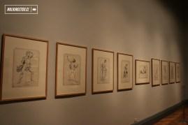 MUSEO NACIONAL DE BELLAS ARTES - COLECCION - 01-02-2016 - 12