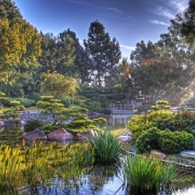 magical_garden-fb