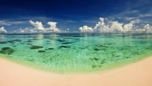beach1_800_450