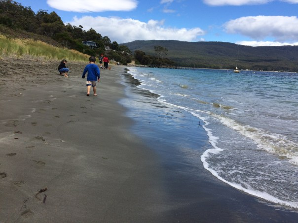 Beach in front of Fluted Cape Parking Area, Bruny Island