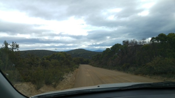 On the road to South Briny Island to visit Bruny Island Lighthouse.