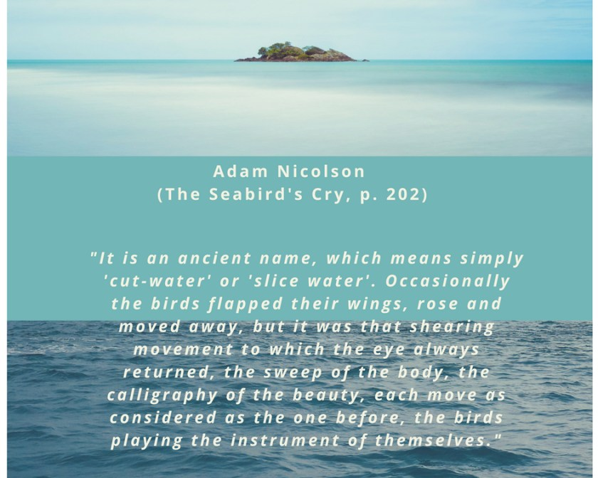 Adam Nicolson, The Seabirds' Cry