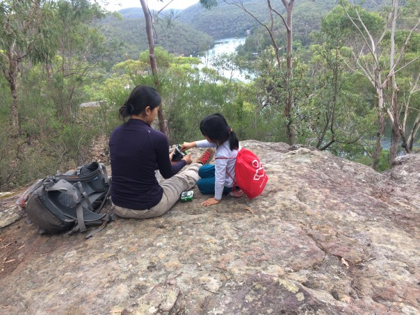 Berowra Waters view point, section of the Great North Walk, Berowra Waters.