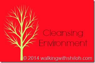 cleansingenvironment