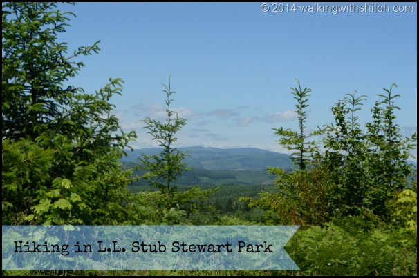 Hiking in L.L. Stub Stewart Park