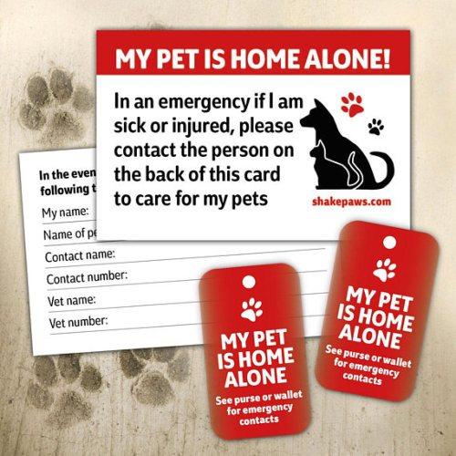 Home alone pet card