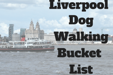 Dog walking bucket list