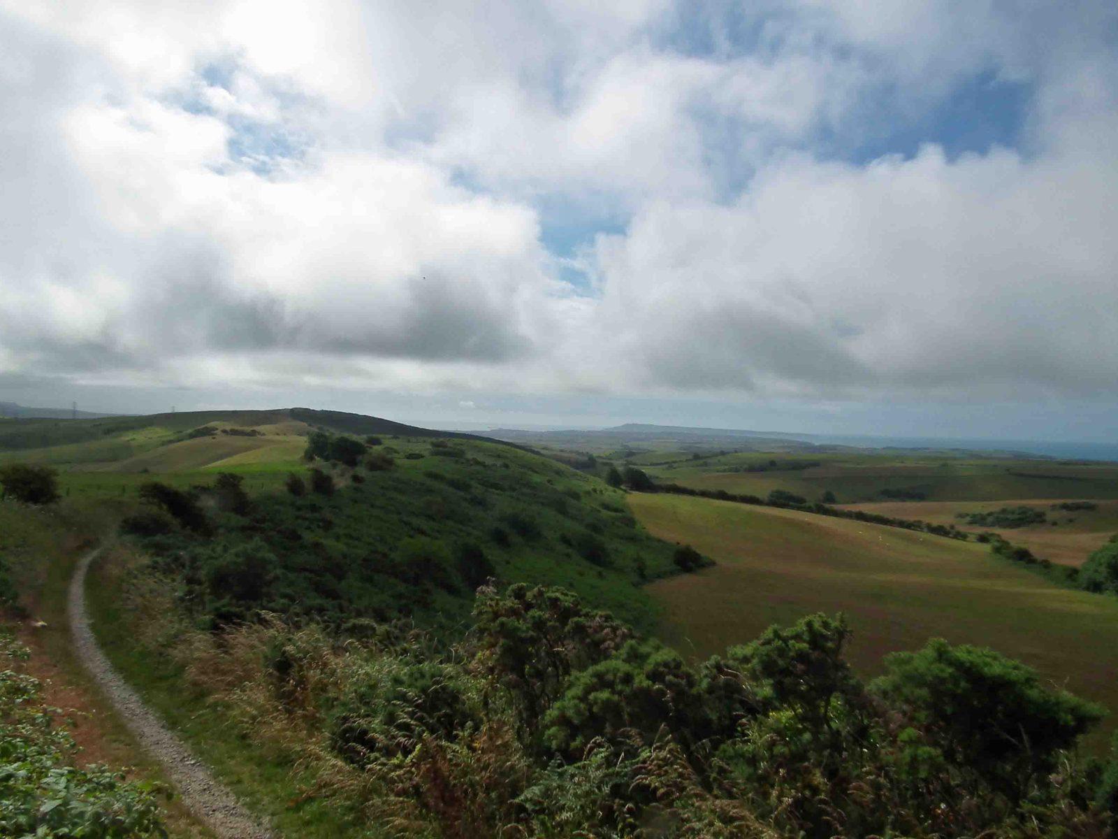 1572959284.Ralph-Hoyte_Land-Bone-Stone_Dorset_Bronk1-9