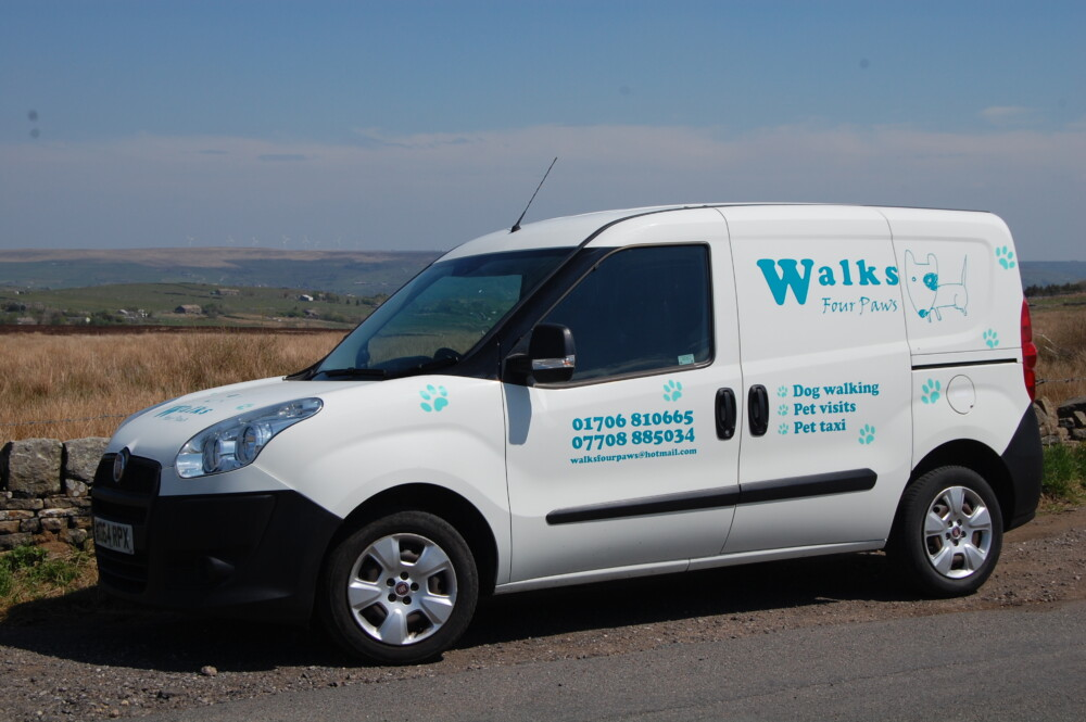 Our Dog Walking Van
