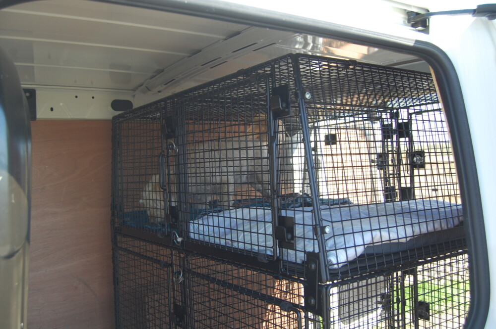 Professionally fitted dog cage